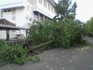 Fakultas MIPA Utara