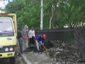 Membersihkan bekas pohon